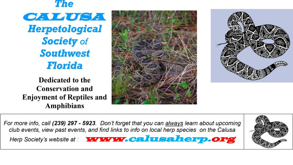 CALUSA Herpetology Society of Southwest Florida