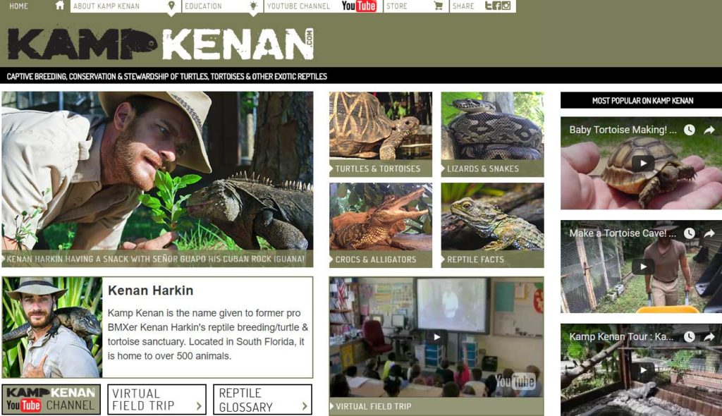 Kamp Kenan - tortoise care videos