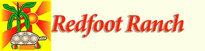 Redfootranch.com